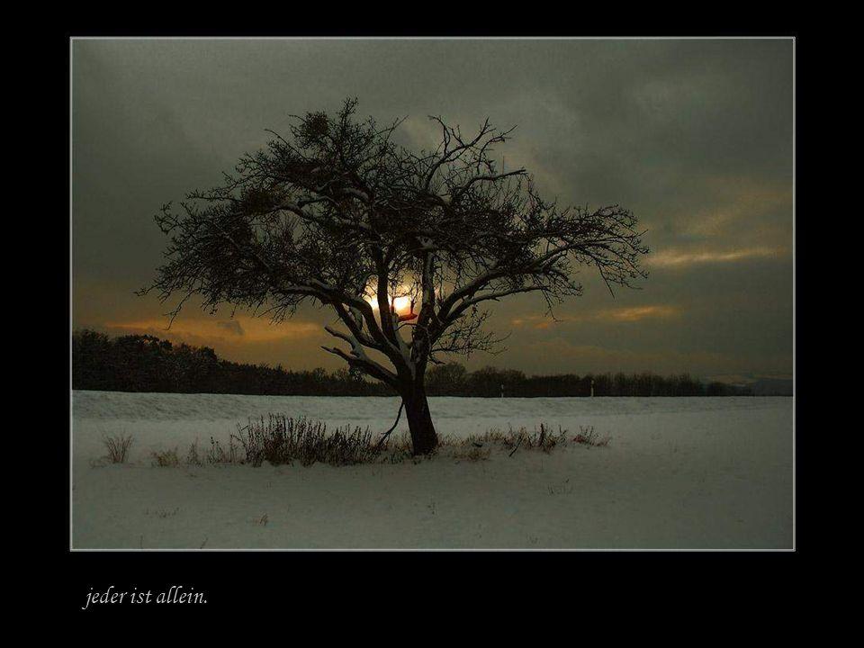Leben ist einsam sein