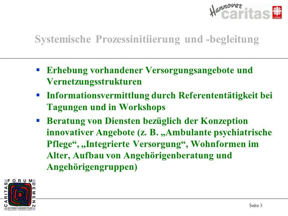 Seite 3 Systemische Prozessinitiierung und -begleitung Erhebung vorhandener Versorgungsangebote und Vernetzungsstrukturen Informationsvermittlung durc