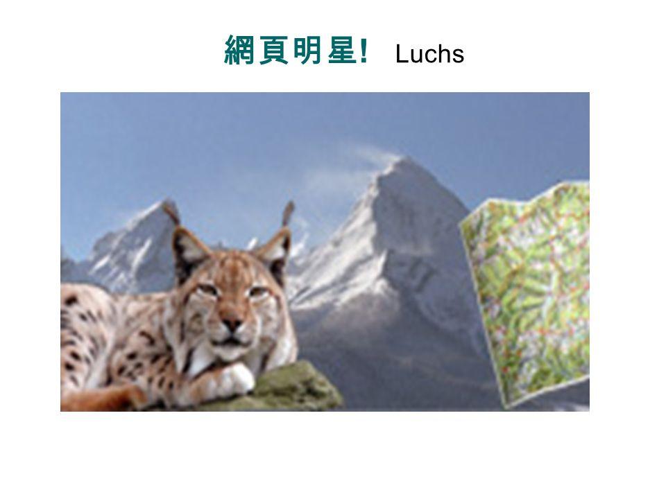 Luchse (Wildkatze) Lynx Lynx lynx Lynx canadensis Lynx pardinus Lynx rufus http://zh.wikipedia.org/wiki/%E7%8C%9E%E7%8C%81%E5%B1%AC