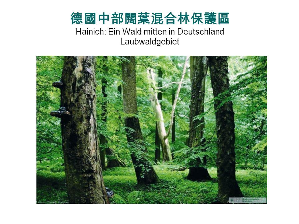 Rundgang durch die Wipfel http://www.nationalpark-hainich.de/fileadmin/nph/media/Bildmaterial/Baumkronenpfad/Rundgang/NPH_BKP_Rundgang_Uebersicht_09-12.j
