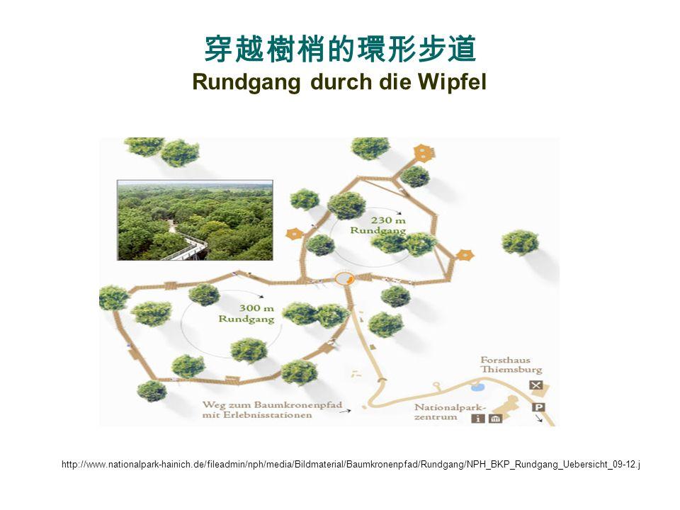Nationalpark Hainich - ein Urwald mitten in Deutschland http://mw2.google.com/mw-panoramio/photos/medium/20075843.jpg