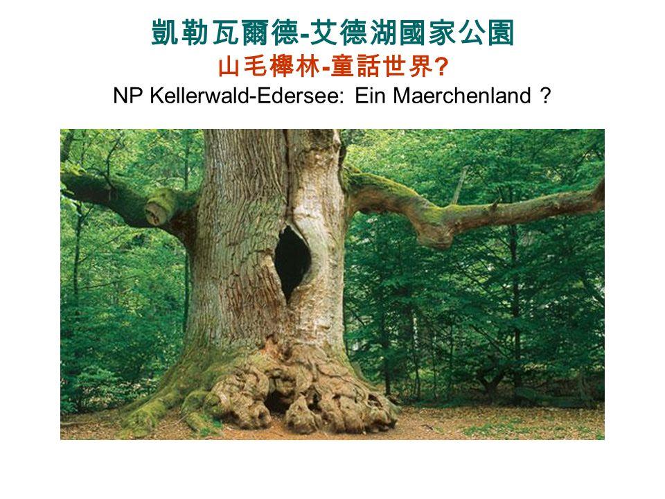 NP Harz (2006) 24700 ha