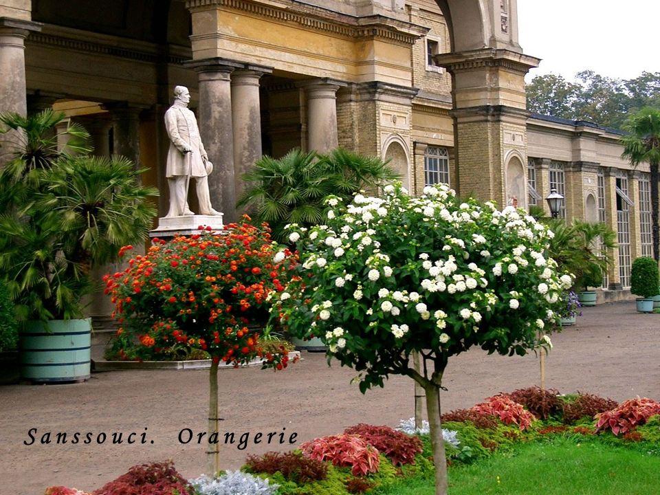 Sanssouci. Orangerie