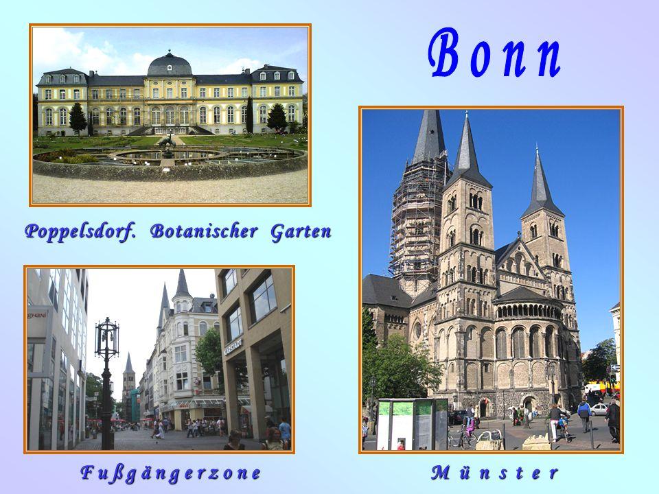 MünsterFußgängerzone Poppelsdorf. Botanischer Garten