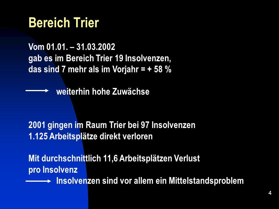 3 Neben den grossen gibt es in Deutschland eine Vielzahl von kleinen und mittleren Insolvenzen - alle 15 Minuten meldet ein Unternehmen Insolvenz an -