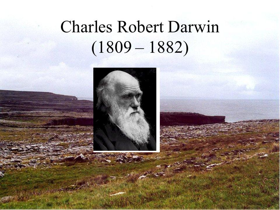 Robert Chambers (1802 – 1883) Veröffentlicht anonym Vestiges of the History of Creation Gott als Gesetzgeber der Natur – diese aber von ihm emanzipiert Riesiger Verkaufserfolg!