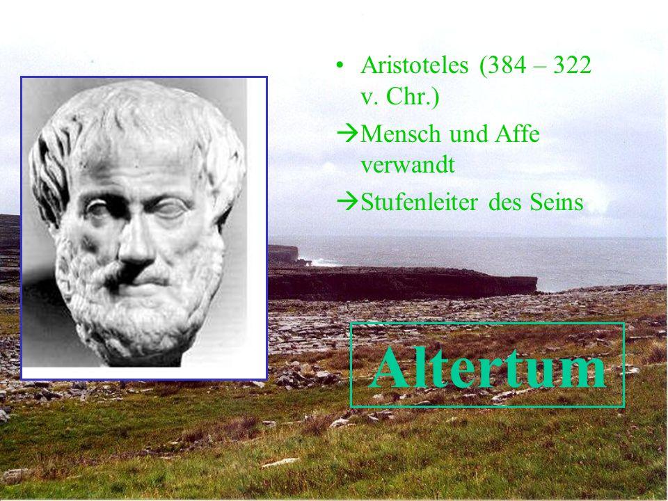 Altertum Aristoteles (384 – 322 v. Chr.) Mensch und Affe verwandt Stufenleiter des Seins