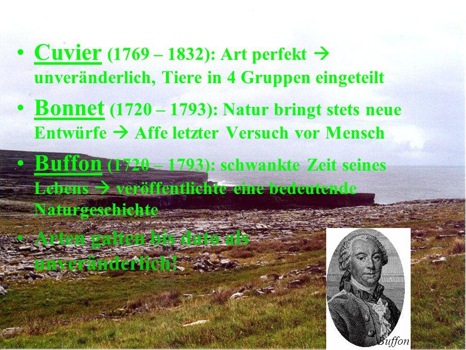 Cuvier (1769 – 1832): Art perfekt unveränderlich, Tiere in 4 Gruppen eingeteilt Bonnet (1720 – 1793): Natur bringt stets neue Entwürfe Affe letzter Versuch vor Mensch Buffon (1720 – 1793): schwankte Zeit seines Lebens veröffentlichte eine bedeutende Naturgeschichte Arten galten bis dato als unveränderlich.