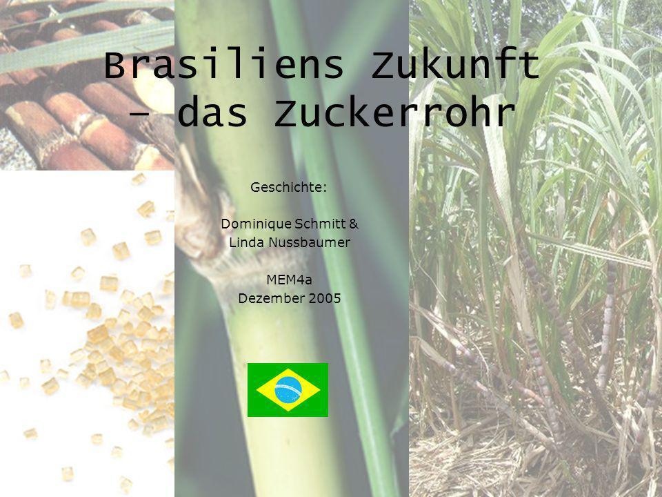 Geschichte: Zuckerrohr in Brasilien Linda & Dominique 2 Zuckerrohr Heimat Indien oder Neuguinea oder China (von Kolumbus nach Südamerika) Art Gras, Familie Gramineae Brasilien < 1% des landwirtschaftlich genutzten Bodens (4,5 Millionen Hektar) Ernte zentralen Süden & nördlichen Nordosten, 1 -1.5 Jahre bis 1.