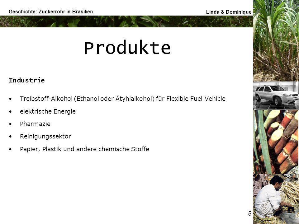 Geschichte: Zuckerrohr in Brasilien Linda & Dominique 6 National Weltgrösster Zuckerrohr-Produzent 36% Weltmarktproduktion (55% Treibstoff-Alkohol, 45% Zucker) geringste Produktionskosten FFVs in Brasilien 2005 Marktanteil > 50% (1 Tonne Zuckerrohr = Energiepotential von 1,2 Erdöl-Barrels) Schaffung elektrische Energie