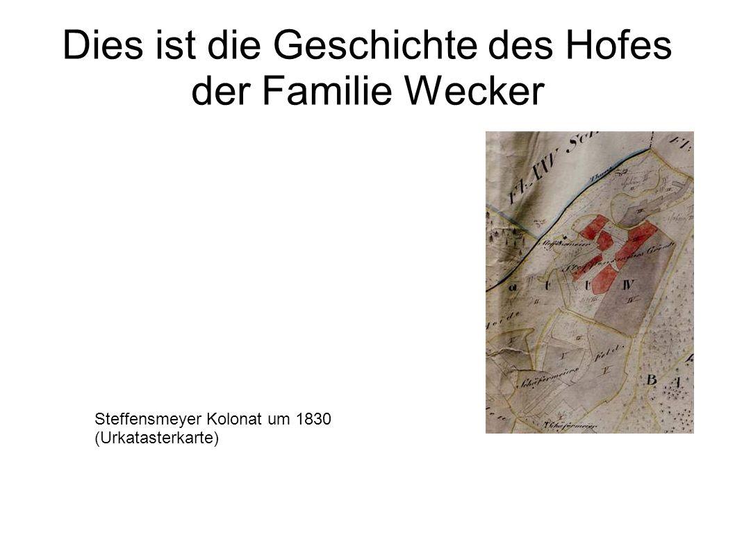 Dies ist die Geschichte des Hofes der Familie Wecker Steffensmeyer Kolonat um 1830 (Urkatasterkarte)