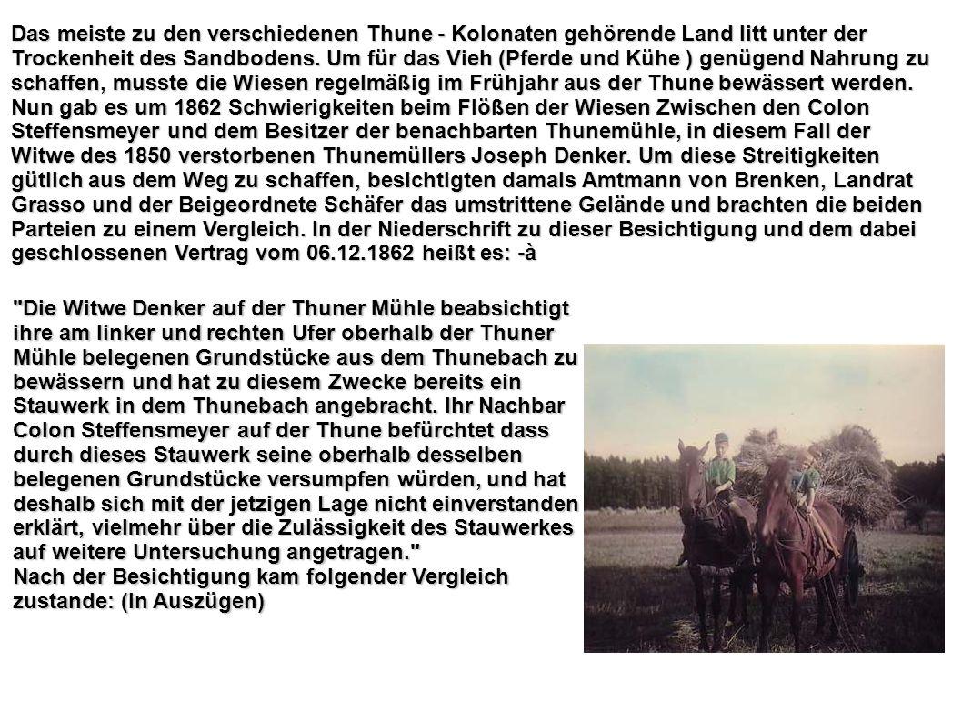 Das meiste zu den verschiedenen Thune - Kolonaten gehörende Land litt unter der Trockenheit des Sandbodens. Um für das Vieh (Pferde und Kühe ) genügen