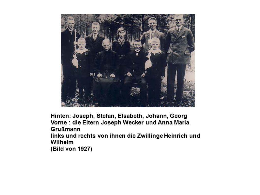 Hinten: Joseph, Stefan, Elsabeth, Johann, Georg Vorne : die Eltern Joseph Wecker und Anna Maria Grußmann links und rechts von ihnen die Zwillinge Hein