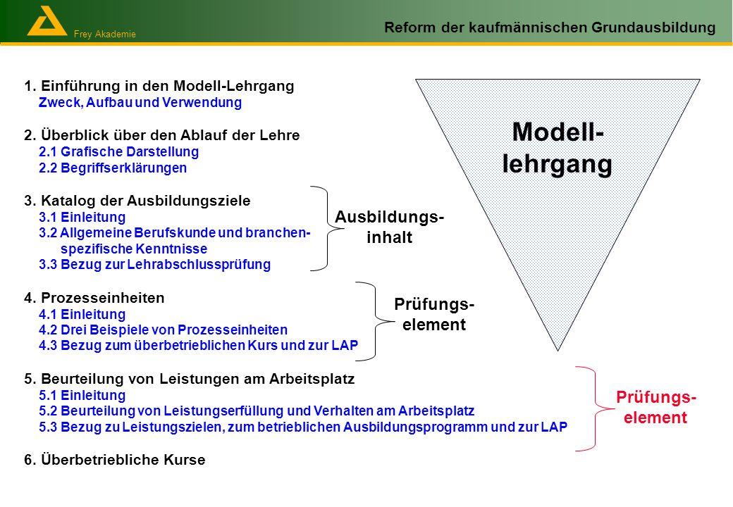 Frey Akademie Reform der kaufmännischen Grundausbildung 1. Einführung in den Modell-Lehrgang Zweck, Aufbau und Verwendung 2. Überblick über den Ablauf