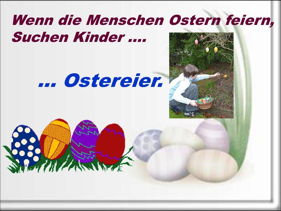 Wenn die Menschen Ostern feiern, Suchen Kinder …. … Ostereier.