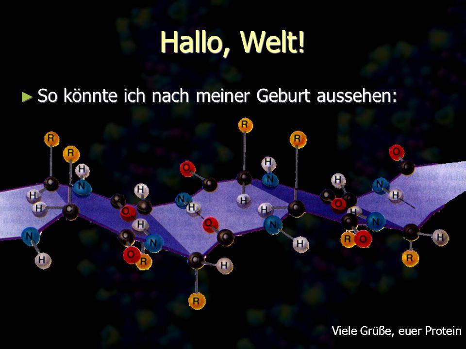 Hallo, Welt! So könnte ich nach meiner Geburt aussehen: So könnte ich nach meiner Geburt aussehen: Viele Grüße, euer Protein