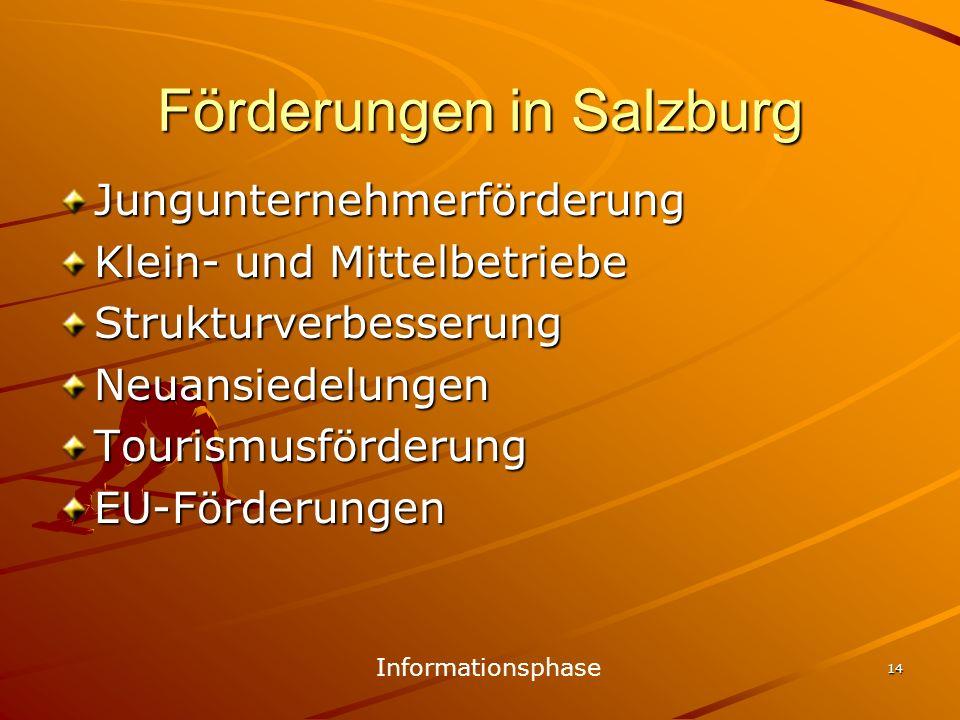 14 Förderungen in Salzburg Jungunternehmerförderung Klein- und Mittelbetriebe StrukturverbesserungNeuansiedelungenTourismusförderungEU-Förderungen Inf