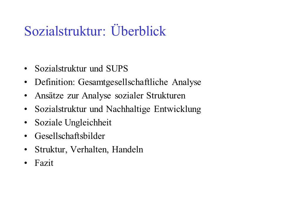 Sozialstruktur: Überblick Definition: Gesamtgesellschaftliche Analyse Ansätze zur Analyse sozialer Strukturen Sozialstruktur und Nachhaltige Entwicklung Soziale Ungleichheit Gesellschaftsbilder Struktur, Verhalten, Handeln