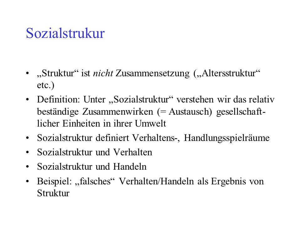 Was ist Sozialstrukturanalyse.
