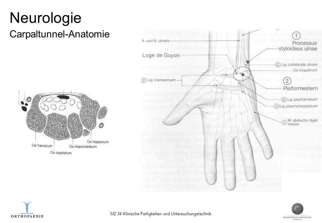 Neurologie Carpaltunnel-Anatomie M2.34 Klinische Fertigkeiten und Untersuchungstechnik