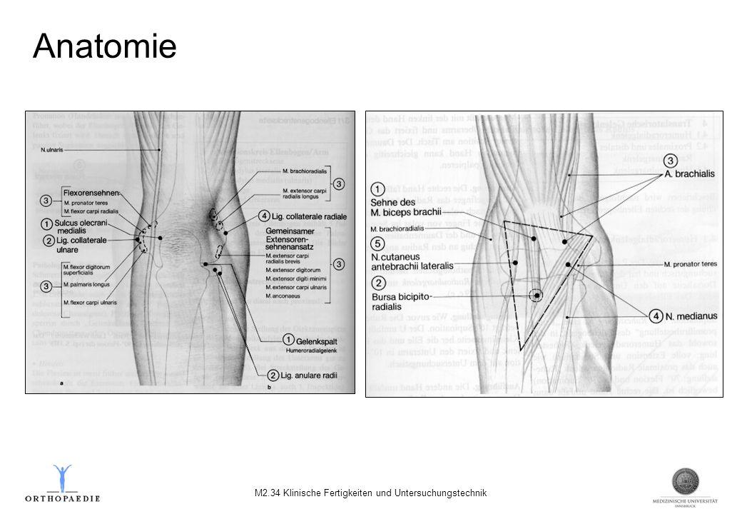 Anatomie M2.34 Klinische Fertigkeiten und Untersuchungstechnik