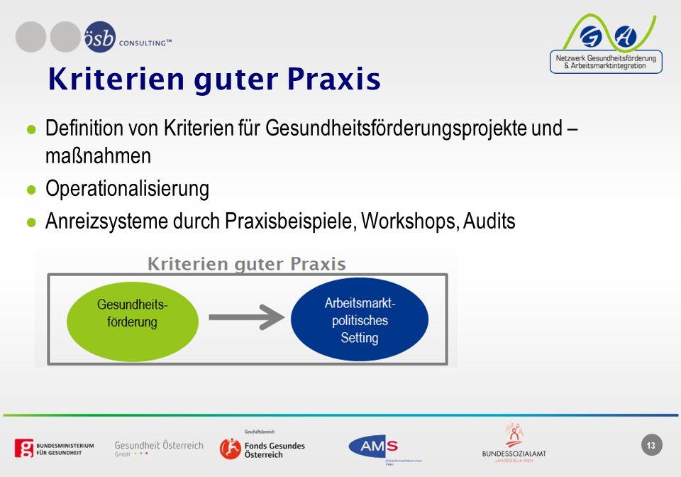 13 Kriterien guter Praxis Definition von Kriterien für Gesundheitsförderungsprojekte und – maßnahmen Operationalisierung Anreizsysteme durch Praxisbeispiele, Workshops, Audits
