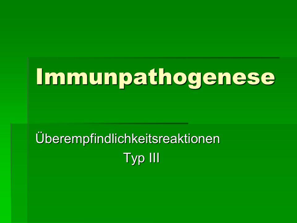 Immunpathogenese Überempfindlichkeitsreaktionen Typ III Typ III