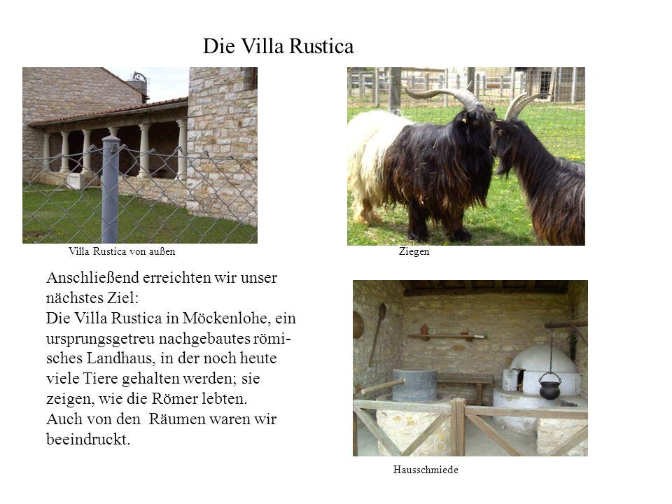 Anschließend erreichten wir unser nächstes Ziel: Die Villa Rustica in Möckenlohe, ein ursprungsgetreu nachgebautes römi- sches Landhaus, in der noch h