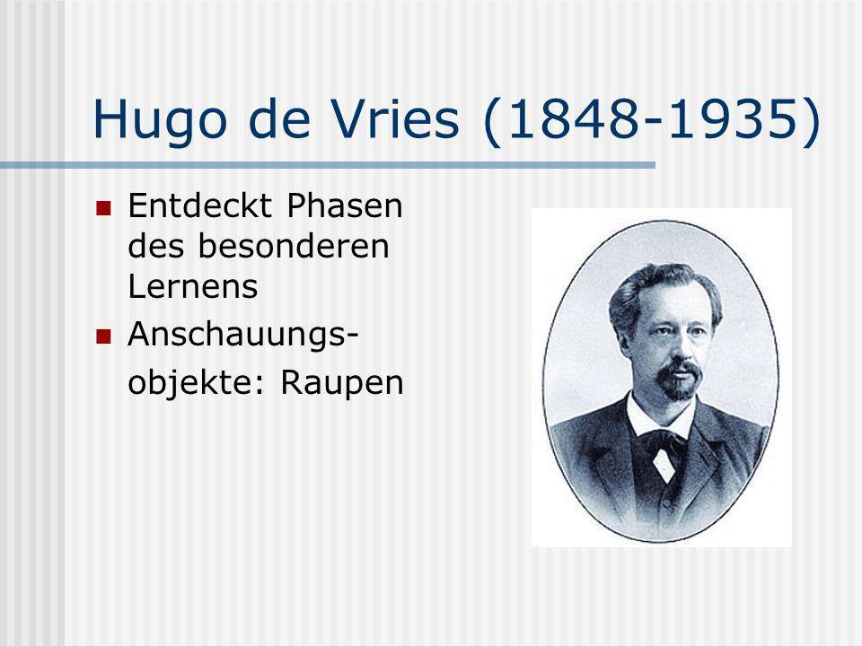 Hugo de Vries (1848-1935) Entdeckt Phasen des besonderen Lernens Anschauungs- objekte: Raupen
