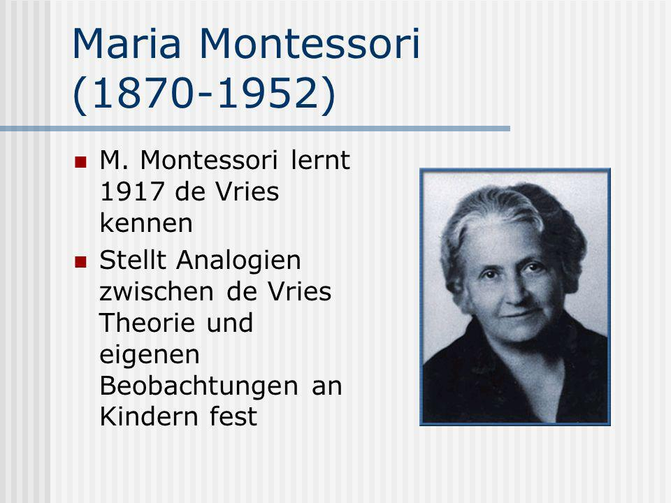 Maria Montessori (1870-1952) M. Montessori lernt 1917 de Vries kennen Stellt Analogien zwischen de Vries Theorie und eigenen Beobachtungen an Kindern