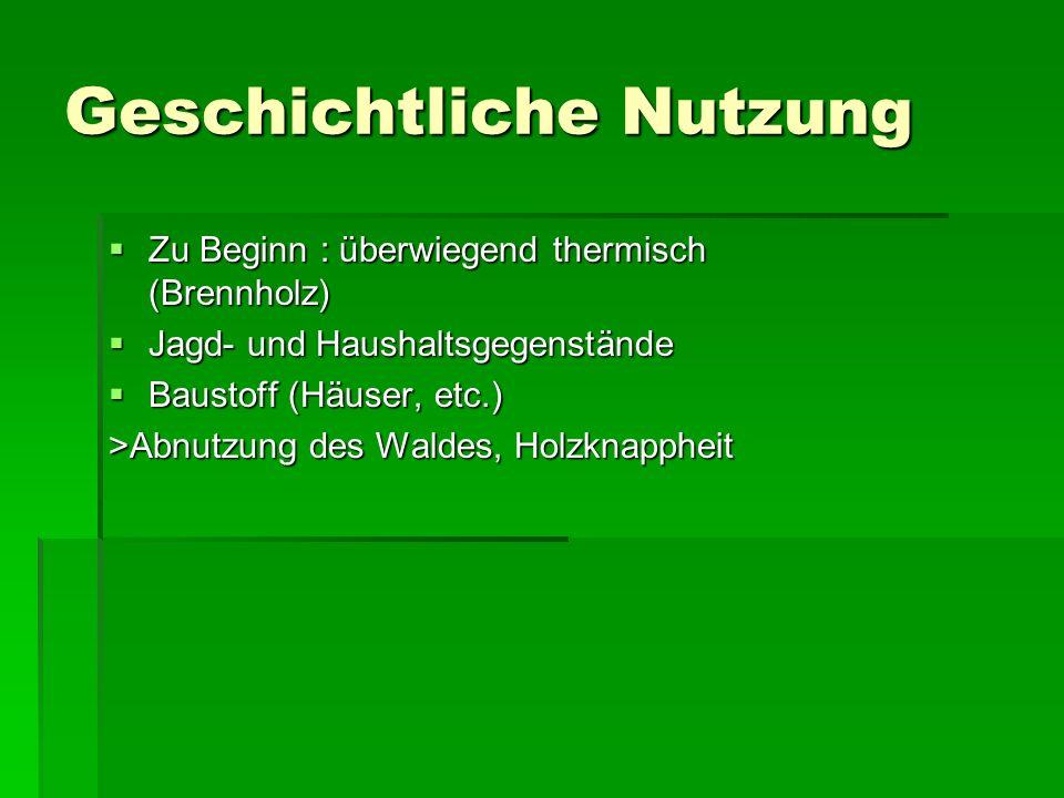 Folge 18.Jh. : Einführung des Nachhaltigkeitsprinzip durch Hans Carl von Carlowitz 18.