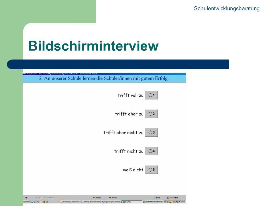 Schulentwicklungsberatung 17 Bildschirminterview