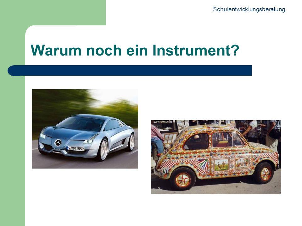 Schulentwicklungsberatung 2 Warum noch ein Instrument?