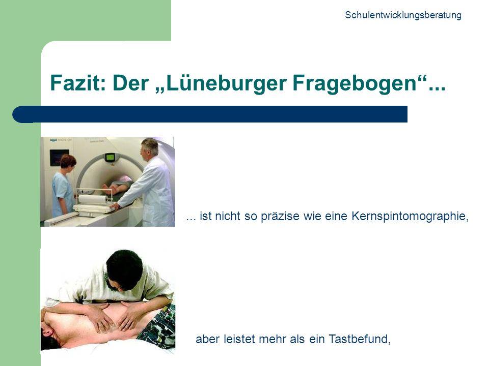 Schulentwicklungsberatung 28 Fazit: Der Lüneburger Fragebogen...... ist nicht so präzise wie eine Kernspintomographie, aber leistet mehr als ein Tastb