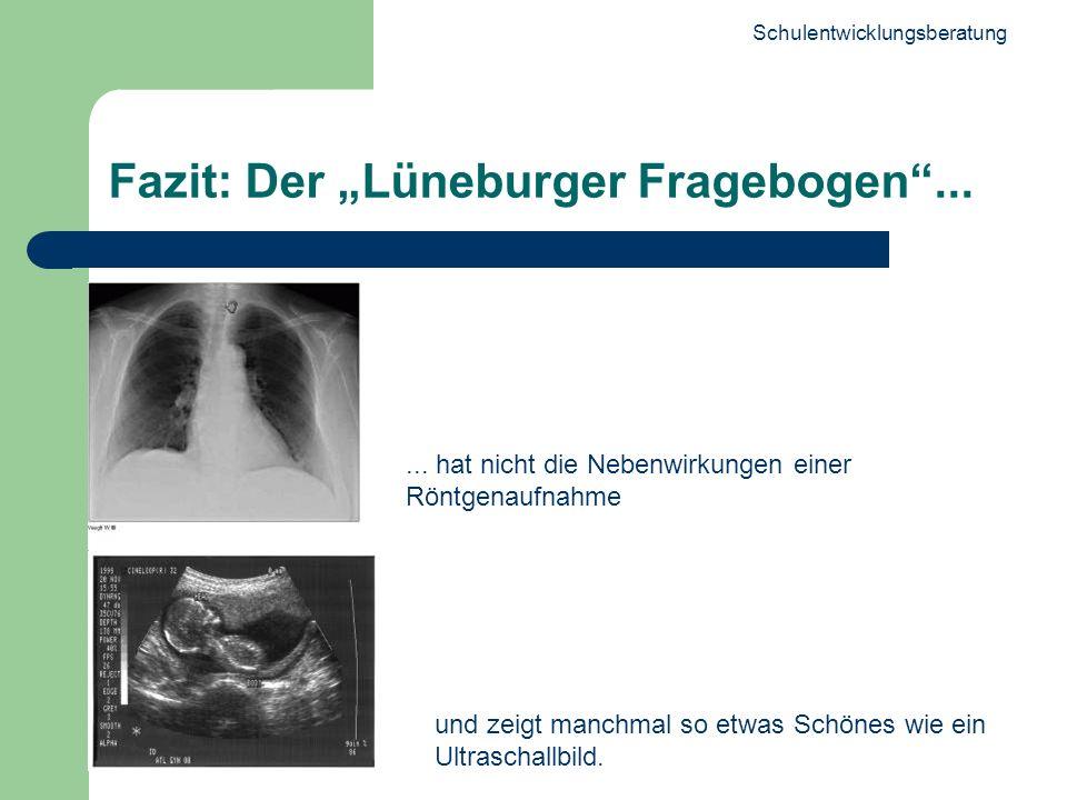 Schulentwicklungsberatung 29 Fazit: Der Lüneburger Fragebogen...... hat nicht die Nebenwirkungen einer Röntgenaufnahme und zeigt manchmal so etwas Sch