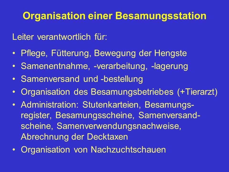 Organisation einer Besamungsstation Leiter verantwortlich für: Pflege, Fütterung, Bewegung der Hengste Samenentnahme, -verarbeitung, -lagerung Samenve