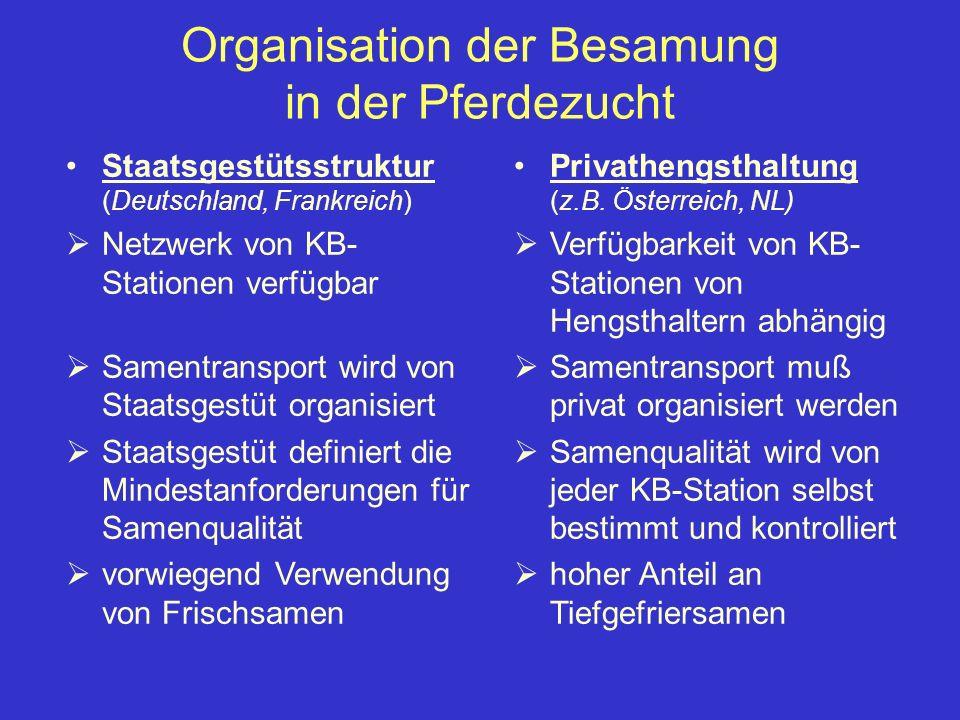 Organisation der Besamung in der Pferdezucht Staatsgestütsstruktur (Deutschland, Frankreich) Netzwerk von KB- Stationen verfügbar Samentransport wird