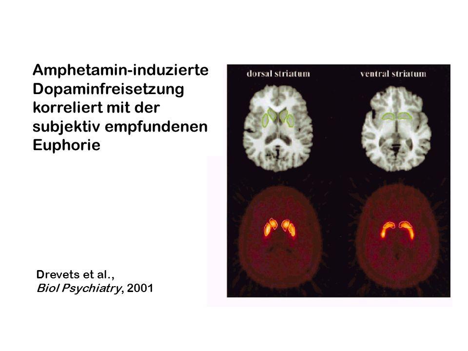 Drevets et al., Biol Psychiatry, 2001 Amphetamin-induzierte Dopaminfreisetzung korreliert mit der subjektiv empfundenen Euphorie