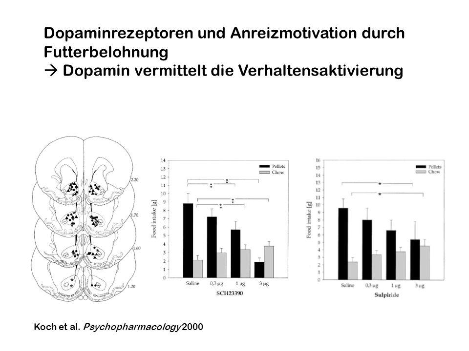 Koch et al. Psychopharmacology 2000 Dopaminrezeptoren und Anreizmotivation durch Futterbelohnung Dopamin vermittelt die Verhaltensaktivierung