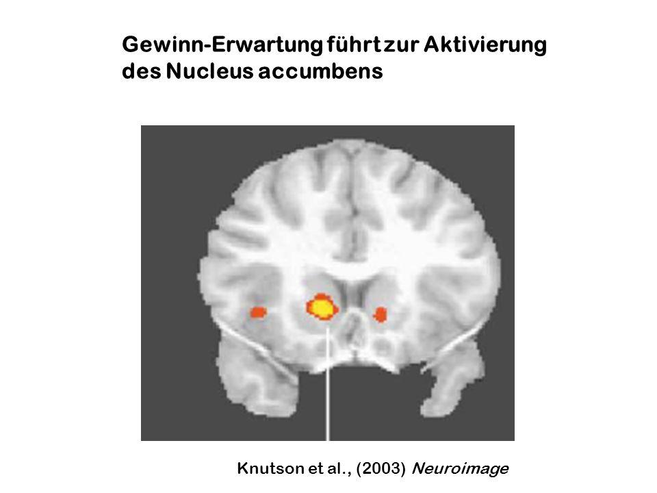 Cortikale Plastizität: Reorganisation sensorischer Karten durch Belohnung Bestfrequenz von Neuronen in A1 bei Ratten, die auf 9 kHz konditioniert wurden (elektrische VTA- Stimulation) Der Trainingseffekt folgt den Regeln Pavlov´scher Konditionierung: Zeitliche Kontingenz des 4kHz CS-Tones und VTA-Stimulation (Bao et al., Nature 2001)