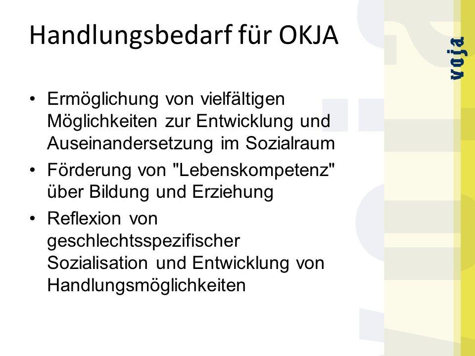 Handlungsbedarf für OKJA Ermöglichung von vielfältigen Möglichkeiten zur Entwicklung und Auseinandersetzung im Sozialraum Förderung von Lebenskompetenz über Bildung und Erziehung Reflexion von geschlechtsspezifischer Sozialisation und Entwicklung von Handlungsmöglichkeiten