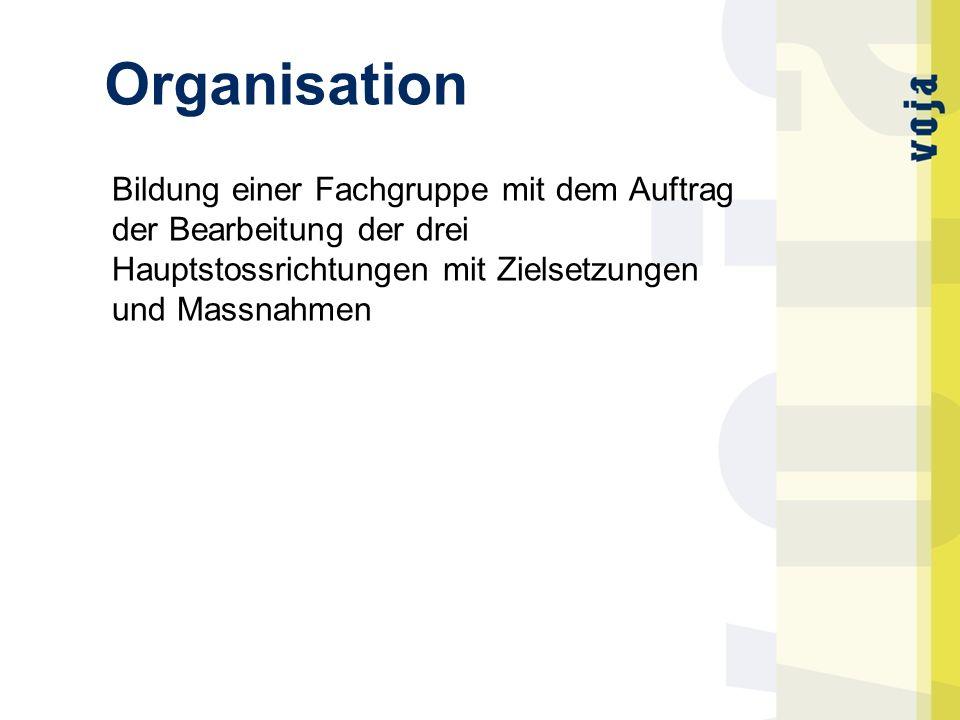 Organisation Bildung einer Fachgruppe mit dem Auftrag der Bearbeitung der drei Hauptstossrichtungen mit Zielsetzungen und Massnahmen