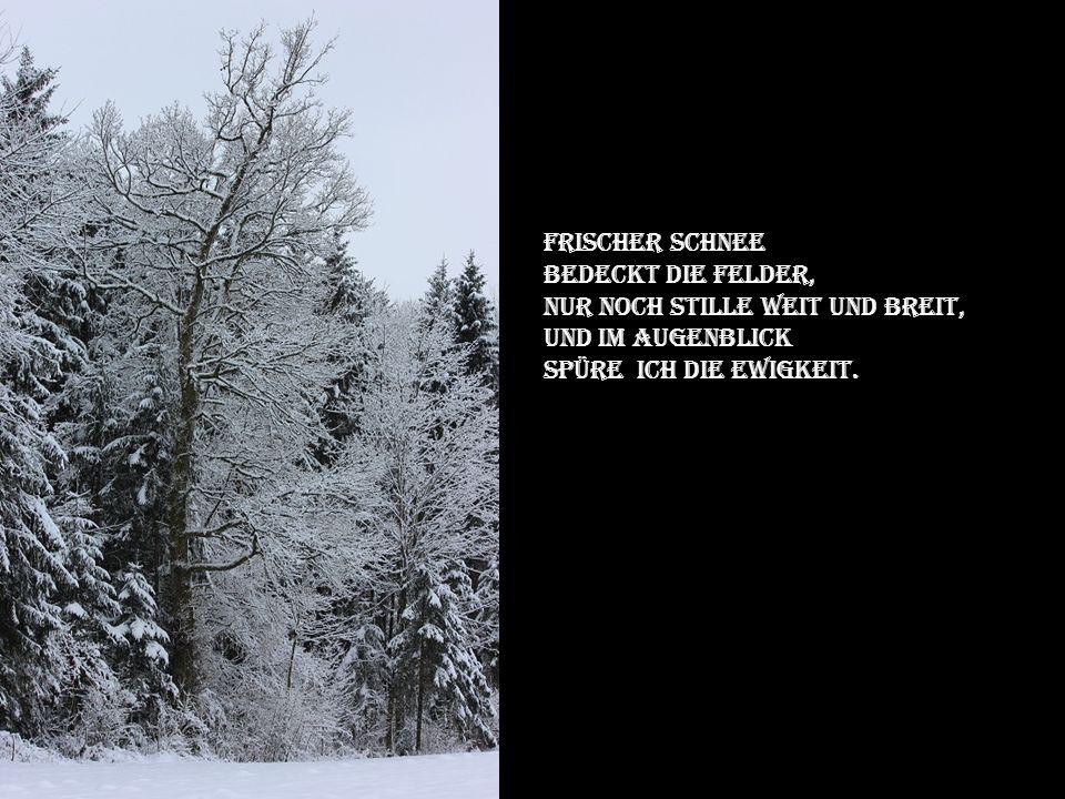 Momos Schnee und Eiszauber Musik Adam Kamen