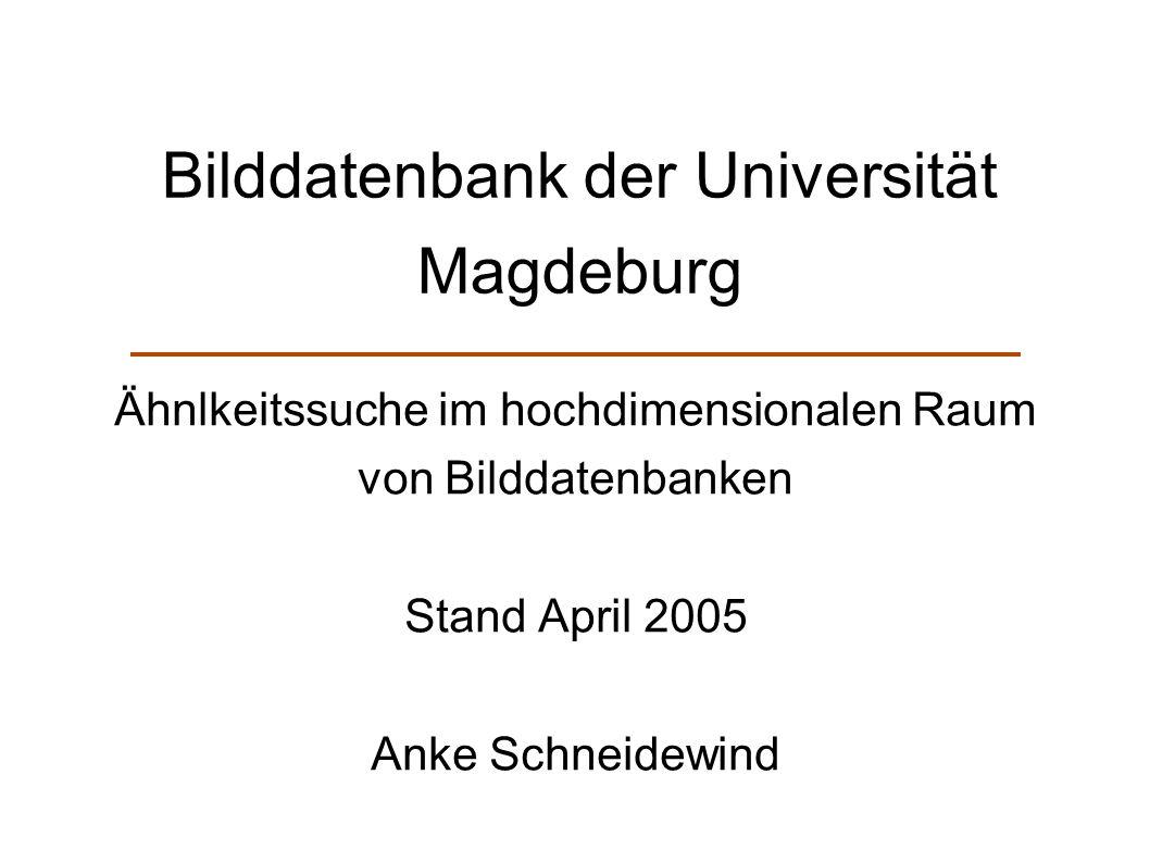 Bilddatenbank der Universität Magdeburg Ähnlkeitssuche im hochdimensionalen Raum von Bilddatenbanken Stand April 2005 Anke Schneidewind