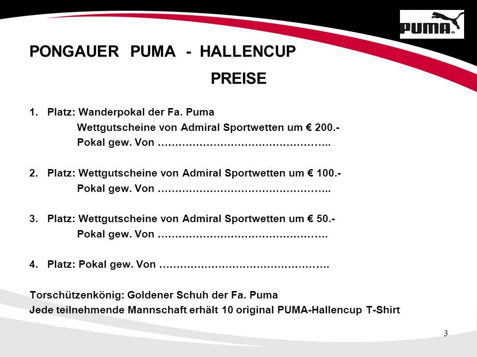 4 PONGAUER PUMA - HALLENCUP Teilnehmende Mannschaften SK Bischofshofen 1bSV Konkordiahütte SC ikarus PfarrwerfenSK Bischofshofen SV MühlbachUFC Wagrain TSU St.