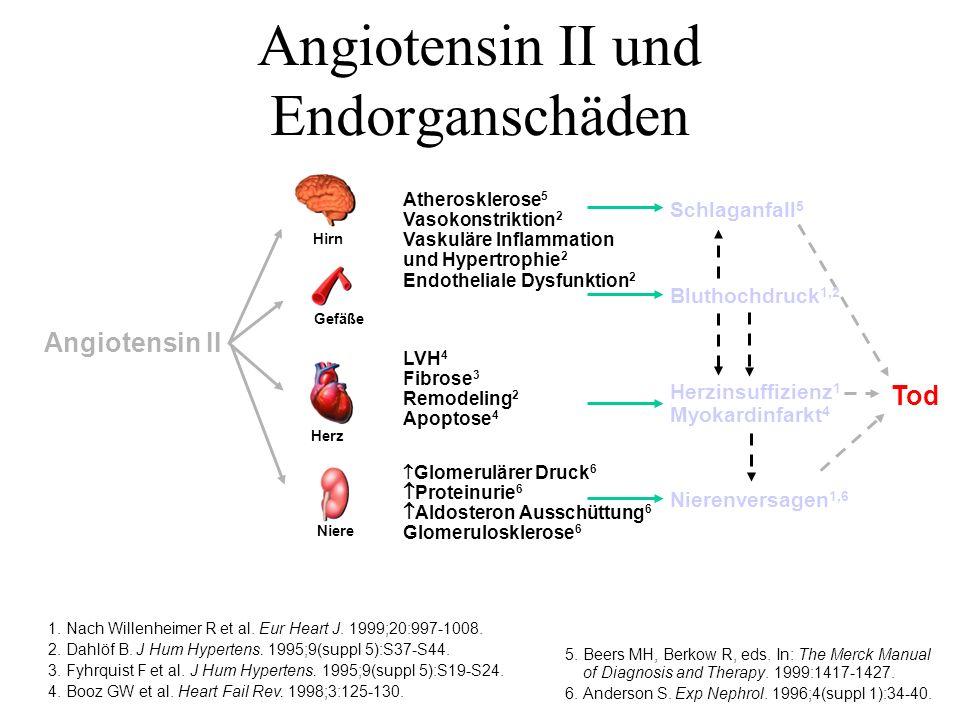 Risikofaktoren Atherosklerose Koronare Herzkrankheit Ischämie Plaqueruptur + Thrombose Infarkt Verminderung der Kontraktilität Dilatation und Remodelling Herzinsuffizienz Terminale Herzinsuffizienz Ang II Das Problem: Angiotensin II hat viele unerwünschte Effekte Dzau und Braunwald, 1990 Plötzlicher Herztod NE