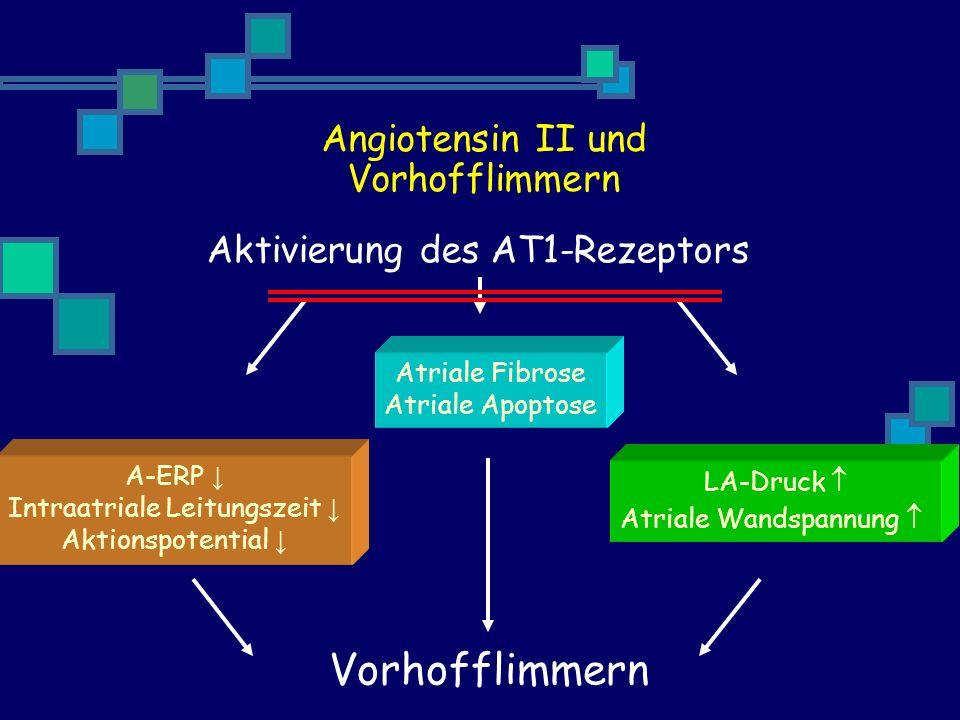 Aktivierung des AT1-Rezeptors Atriale Fibrose Atriale Apoptose A-ERP Intraatriale Leitungszeit Aktionspotential LA-Druck Atriale Wandspannung Vorhofflimmern Angiotensin II und Vorhofflimmern