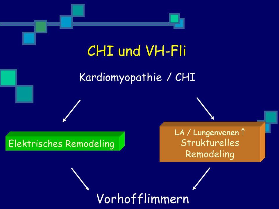 Kardiomyopathie / CHI Vorhofflimmern Elektrisches Remodeling LA / Lungenvenen Strukturelles Remodeling CHI und VH-Fli