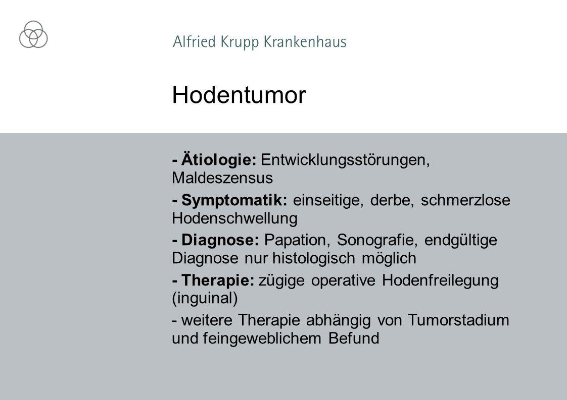 - Ätiologie: Entwicklungsstörungen, Maldeszensus - Symptomatik: einseitige, derbe, schmerzlose Hodenschwellung - Diagnose: Papation, Sonografie, endgü
