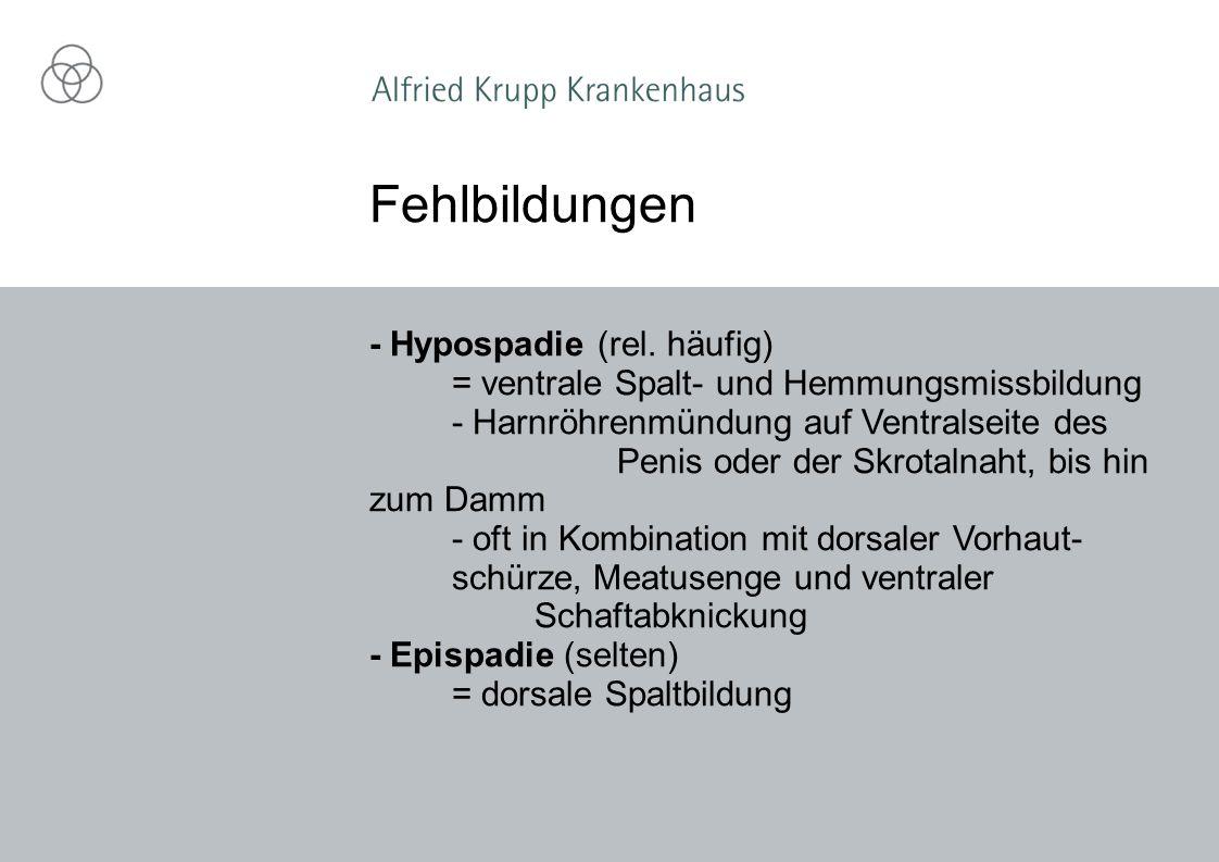- Hypospadie (rel. häufig) = ventrale Spalt- und Hemmungsmissbildung - Harnröhrenmündung auf Ventralseite des Penis oder der Skrotalnaht, bis hin zum